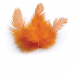 SACHET 3G PLUMES DE COQ ORANGE 10 cm