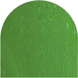 Feuille autocollante 10X23 cm Vert herbe  effet miroir
