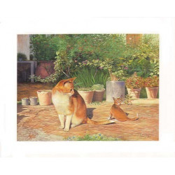 ASTRO 391 - 24X30 - CHAT ET CHATON