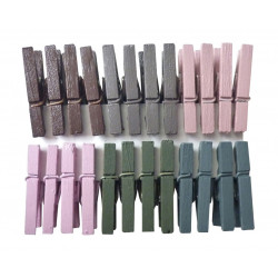 LOT 24 PINCES A LINGE  PASTEL 25mm