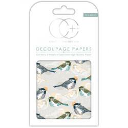 Papier Patch 3 Feuilles 35x40 cm Oiseaux fond gris