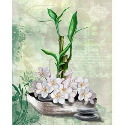 Image 3D - gk2430082 - 24x30 - bambou et fleur coco
