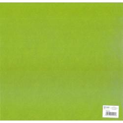 Feuillefeutrine30x30cm 2mm vert