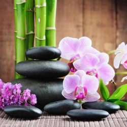 Image pour tableaux 3D GK3030067 - 30X30 -  Orchidée et pierres noires et bambou -  Aux Bleuets Loisirs créatifs à Reims