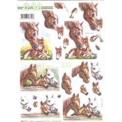 Carte 3D prédéc. - les chevaux