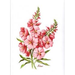 Image 3D - fleurs roses -...