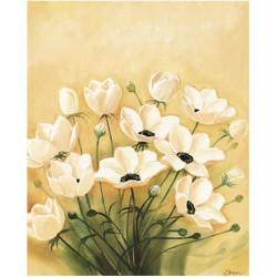 Image 3D - 0720004 - 24x30 - coquelicots blancs