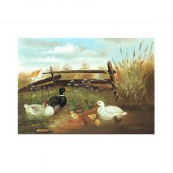 Image pour tableaux 3d ASTRO 422 - 24X30 - CANARDS devant barrière - Aux bleuets Loisirs créatifs à Reims