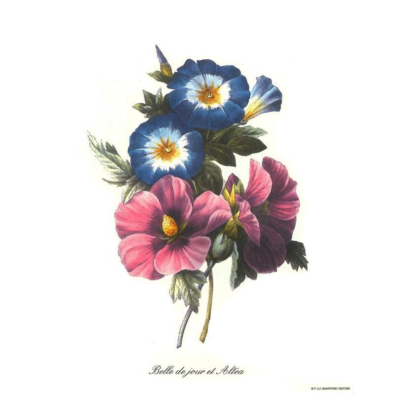 Image pour tableaux 3D ARCA 35 - 24x30 - Passiflore - Aux Bleuets Loisirs créatifs à Reims