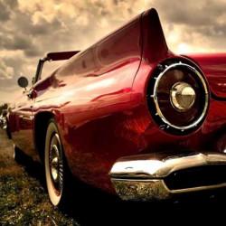 Dm44001 - 40x40 - vintage car