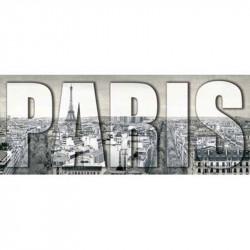 Image pour tableau 3D - DM257869 - 20X50 - PARIS XL