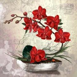 Image pour tableau 3D GK3030061 - 30X30 - Compo florale orchidées rouge