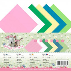 Set 24 feuilles  A5 Amy Design - Spring is here 14.8 x 21 cm