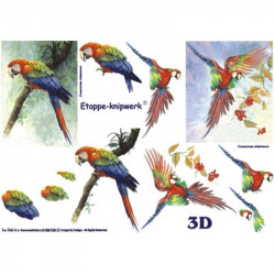 Carte 3D à découper - 2 perroquets - 4169136