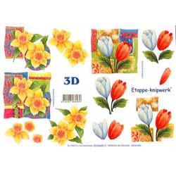Carte 3D à découper - Fleur blanche oranges jaunes - 4169440