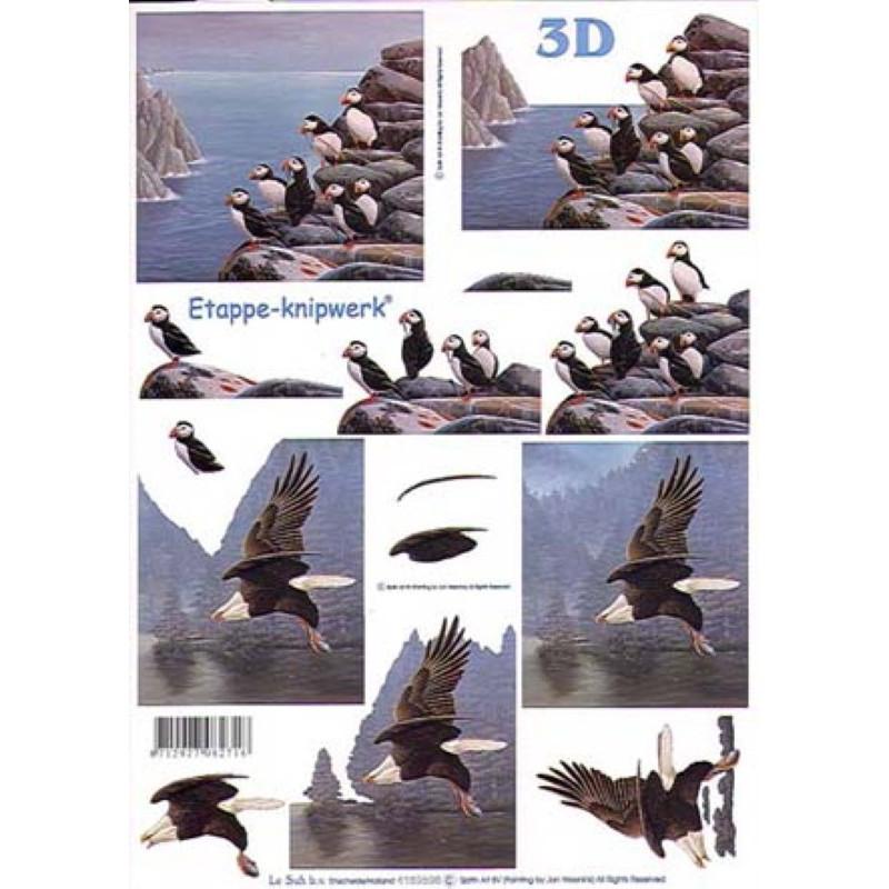 Carterie 3D A4 - Aigle et bébés aigles - 4169596