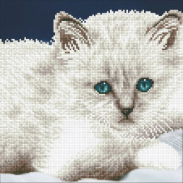 Kit Diamond Art - Le chat...