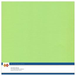 Papier Scrap 30.5x30.5 cm uni Vert anis la feuille