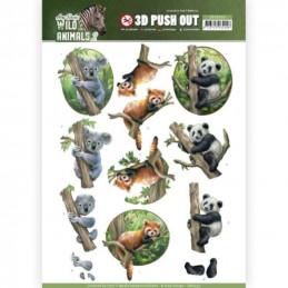 Carte 3D prédéc. - SB10350 - Wild Animals - Panda et koala