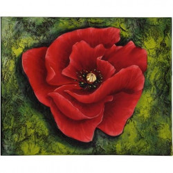 Image 3D - gk2430030 - 24x30 - coquelicot rouge