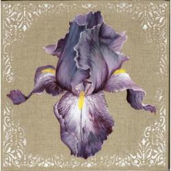 Image pour tableaux 3d GK3030017 Iris violet 30x30 cm