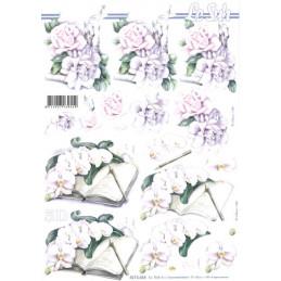 Carte 3D à découper - 8215654 - Orchidées blanches
