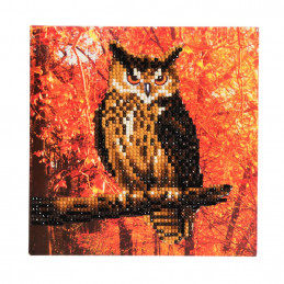 Crystal Art Kit Carte broderie diamant 18x18cm Hibou