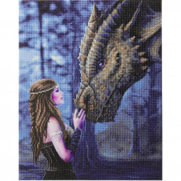 Broderie diamant Crystal Art Kit tableau 40x50cm Femme au Dragon