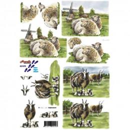 Carte 3D à découper - Moutons et boucs - 821575