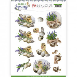 Carte 3D prédéc. - SB10434 - Botanical spring - Canetons