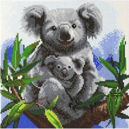 Broderie diamant Kit tableau 30x30cm Koalas