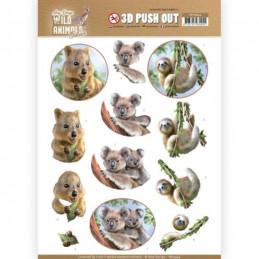 Carte 3D prédéc. - SB10444 - Wild animals - Koala