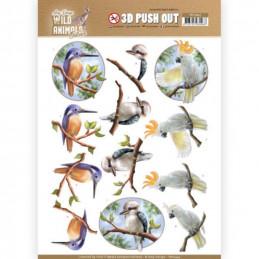 Carte 3D prédéc. - SB10445 - Wild animals - Oiseaux