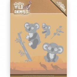 Die - ADD10208 - Wild Animals australie - Koalas