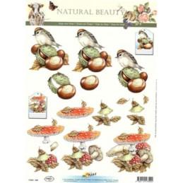Carte 3D à découper - 11053309 -  Moineaux et champignons