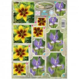 Carte 3D préd métallisée - 260002 - Fleur jaune/violet