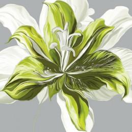 Image 3D - FP99218 - 30x30 - Printemps vert n°1