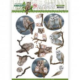 Carte 3D prédéc. - SB10486 - Amazing Owls - Chouettes de nuit