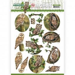 Carte 3D prédéc. - SB10487 - Amazing Owls - Chouettes en forêt