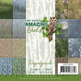 Bloc de papier - Amy Design - Amazing owls 15.2 x 15.2