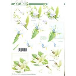 Carte 3D à découper -  Fleurs blanches - 777278