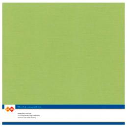 Papier Scrap 30.5x30.5 cm uni Avocat la feuille