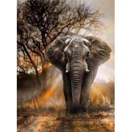 Broderie Diamant - Eléphant dans la Savane 40X50cm