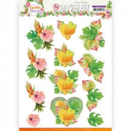 Carte 3D prédéc. - SB10570- Exotic Flowers - Orange Flowers