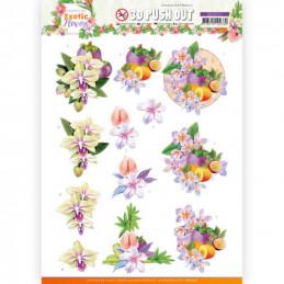 Carte 3D prédéc. - SB10572- Exotic Flowers - Purple Flowers