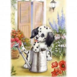 Image 3D - gk2430075 - 24x30 - chiot dalmatien