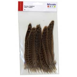 Artemio plumes naturelles 24pc