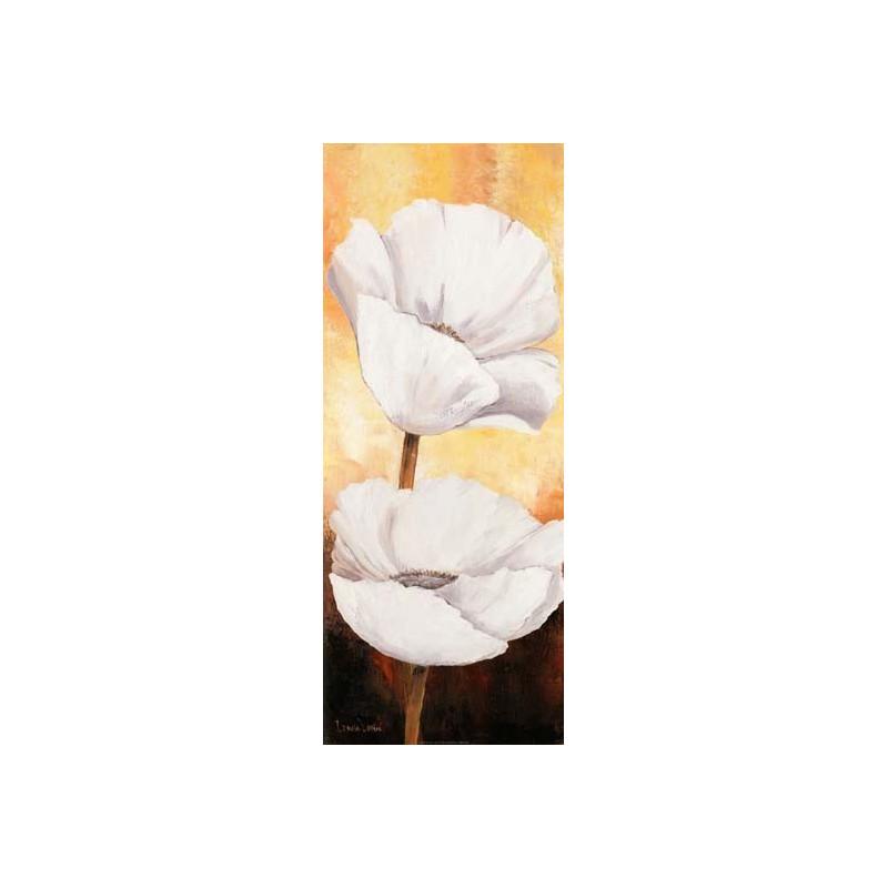 Image pour tableaux 3D - 1000458 - 20X50 - COQUELICOT BLANC Droit Aux bleuets Loisirs créatifs à Reims