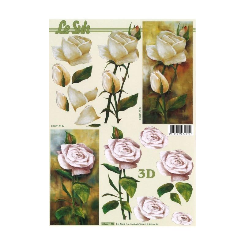 Carterie 3D A4 à découper - Roses 4169160
