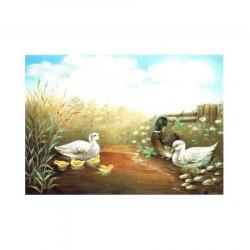 Image pour tableaux 3D - ASTRO 424 - 24X30 - 3 canards dans l'eau  - Aux bleuets Loisirs créatifs à Reims